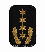 DRK-Dienststellungsabzeichen, 4 ST + EL gold